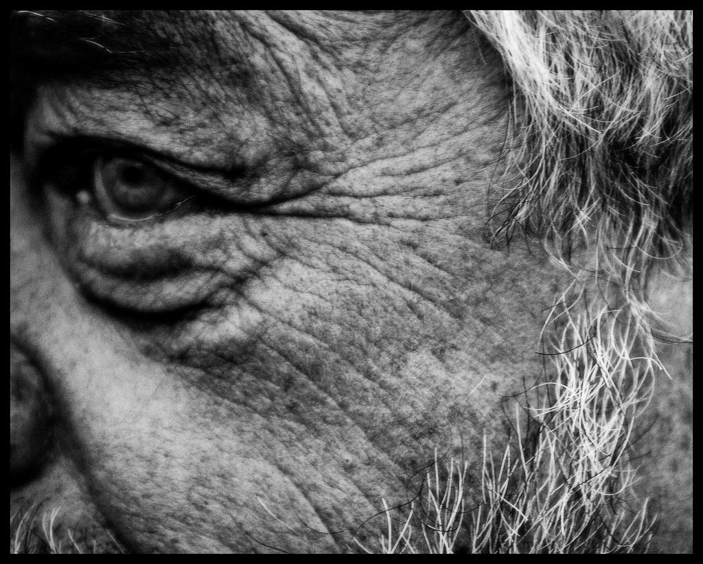 envejecimiento