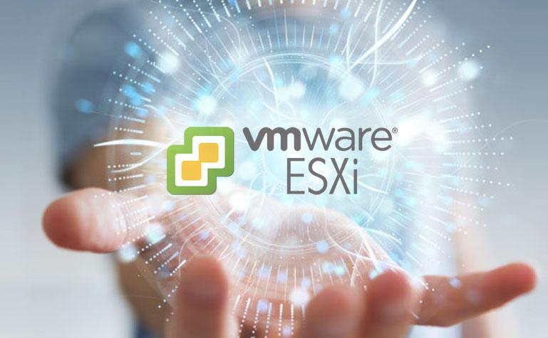 VMware ESXi y Horizon DaaS