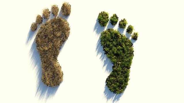 huella ambiental